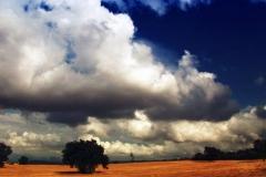 en_tu_ausencia_landscape