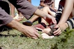 zapatos-cordero
