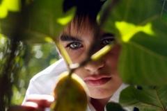 vuelve_renzo_fig_tree